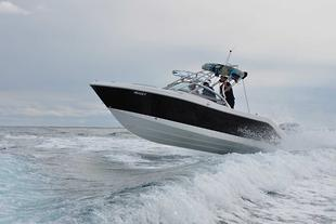 Robalo launches in Aus